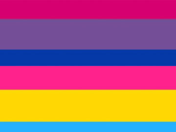 pan flag and bi flag