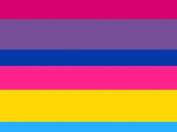pan flag and bi flag